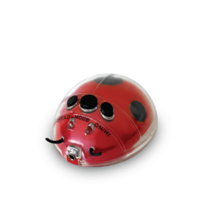 Magic Massage Lady Bug